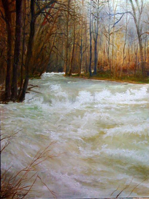 La rivière en crue